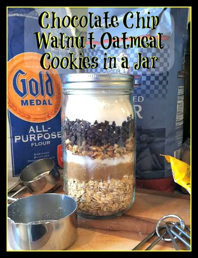 Chocolate Chip, Walnut, Oatmeal Cookies in a Jar