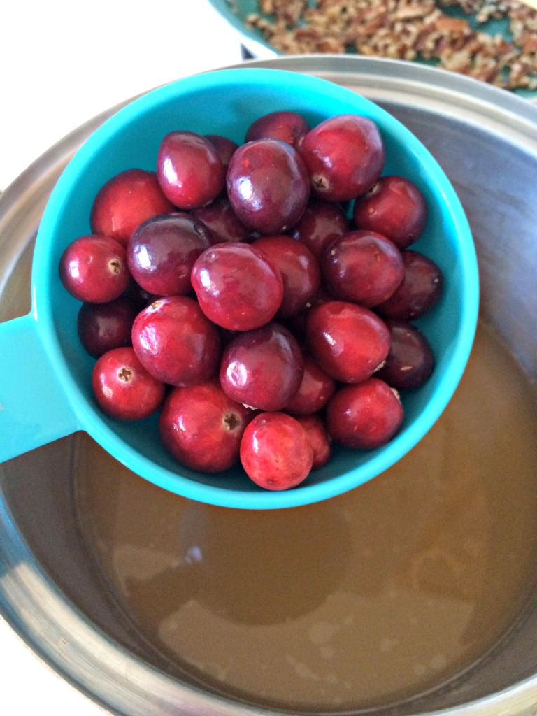 cranberries for Cranberry Pecan Stuffing
