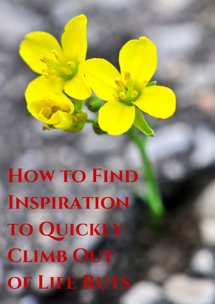 AHow to Find Inspiration to Quickly (1)