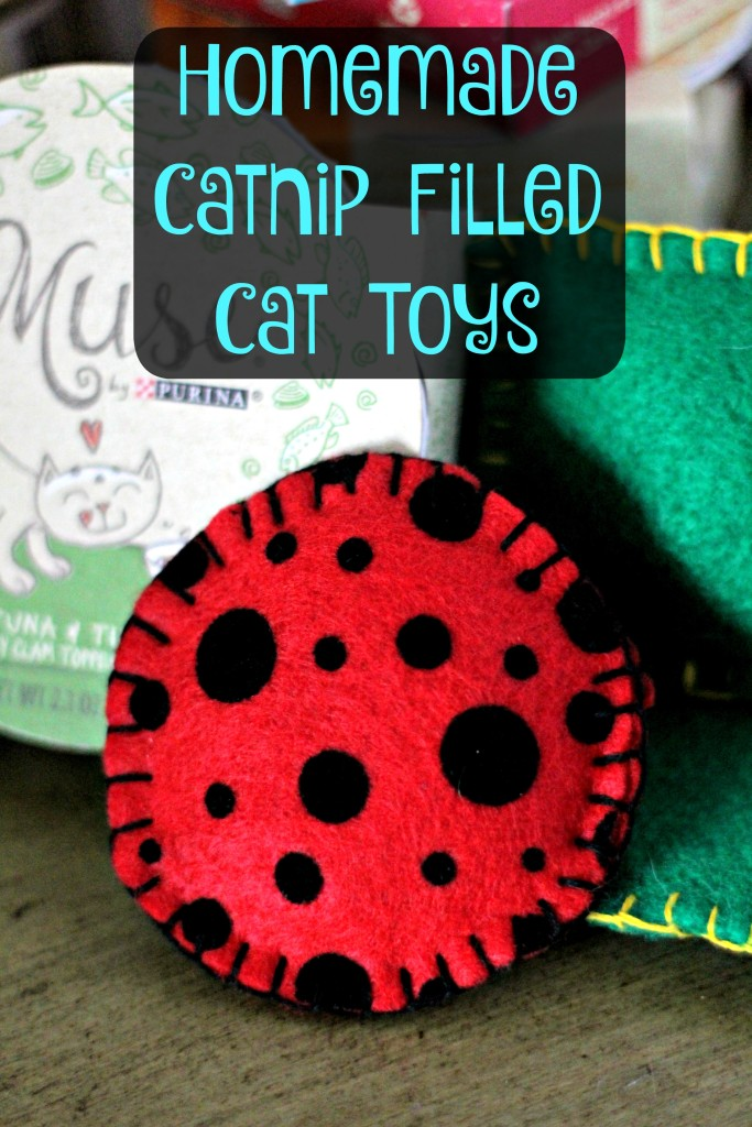 Does your cat inspire you? My cat inspired me to create some homemade catnip filled cat toys. I'll teach you how to make them, including how to do the blanket stitch! #ad #MyCatMyMuse