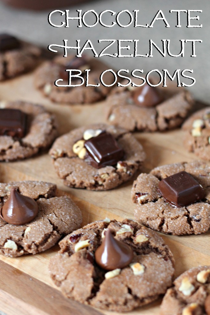 Chocolate Hazelnut Blossoms are a slightly different flavor spin on a traditional favorite. Easy to mix up, and perfect to enjoy with a tall glass of milk.