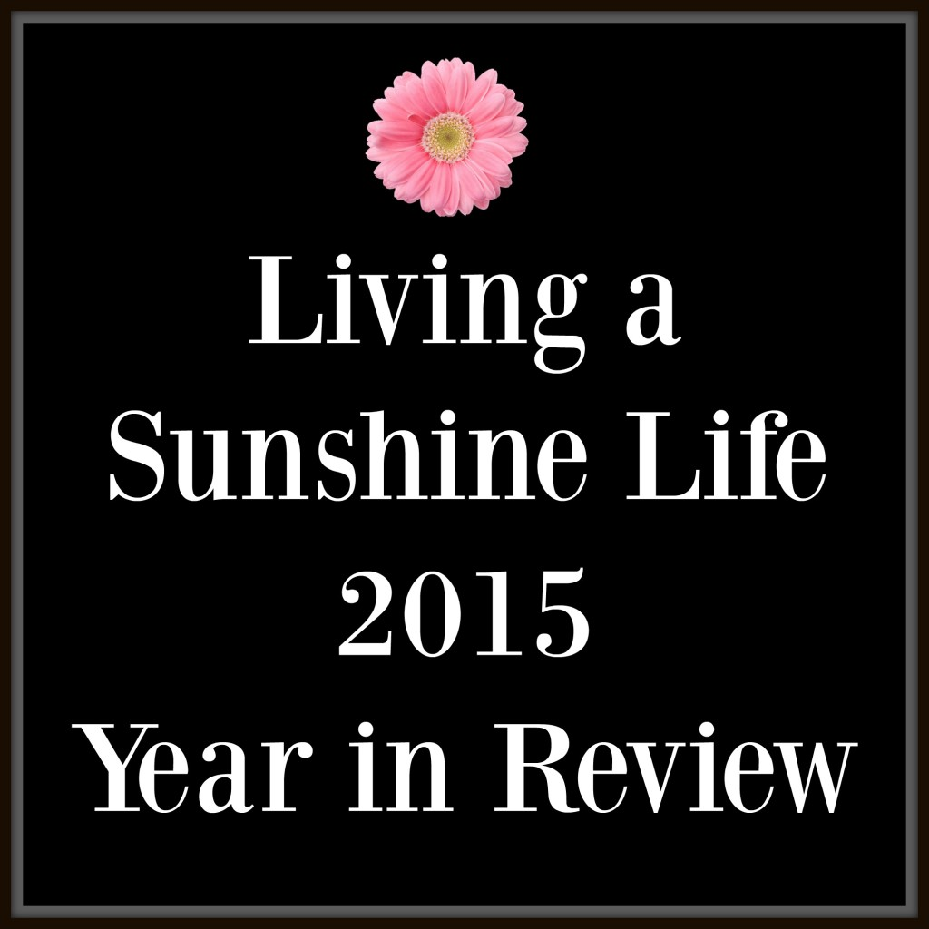 LSL year in review