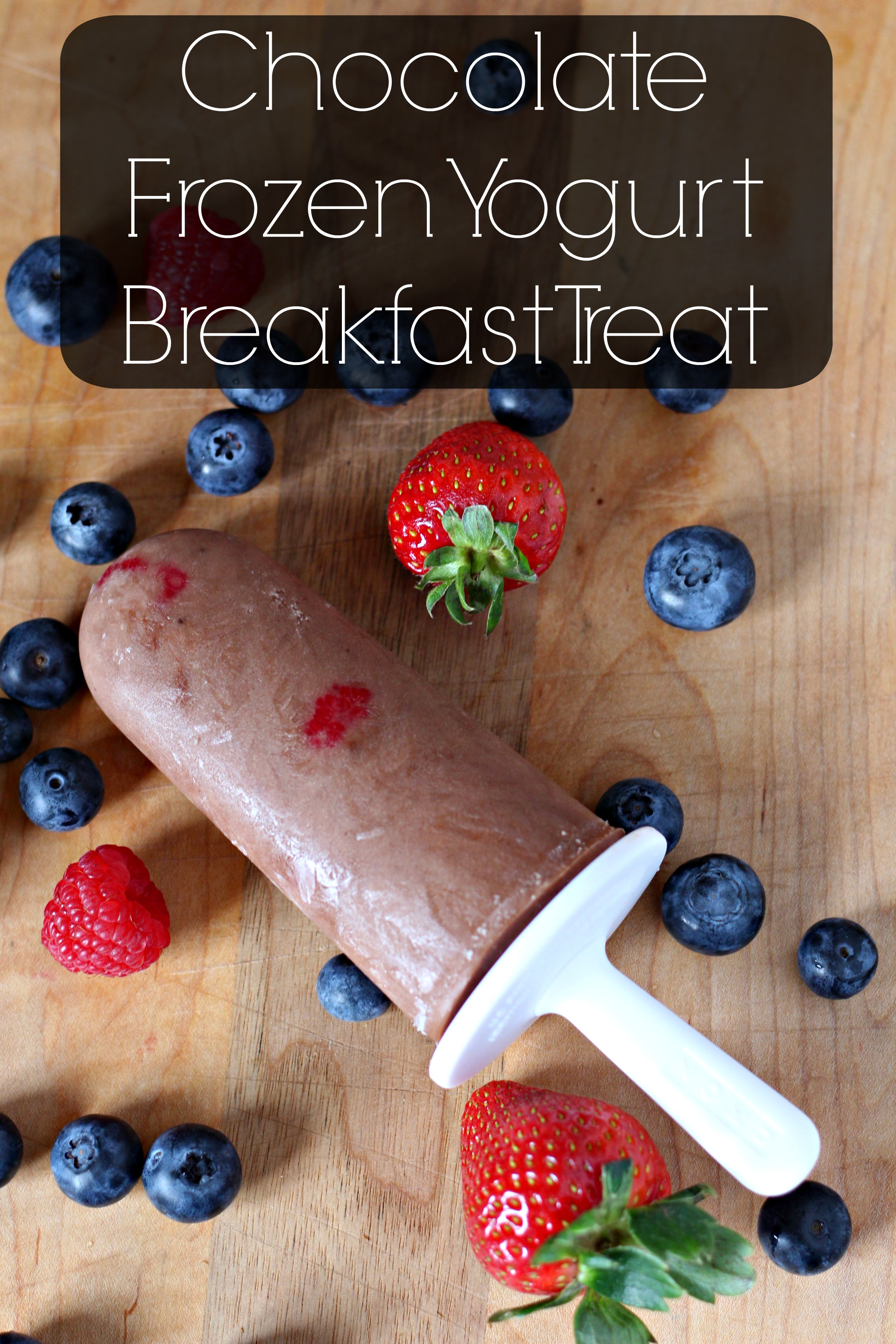 Chocolate Frozen Yogurt Breakfast Treat